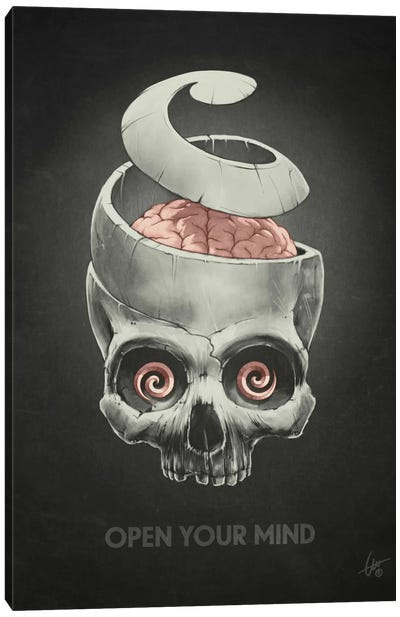 Open Your Mind Canvas Art Print