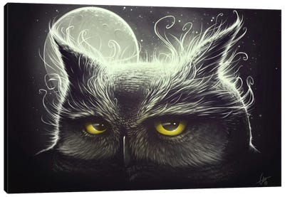 Owl And The Moon Canvas Art Print