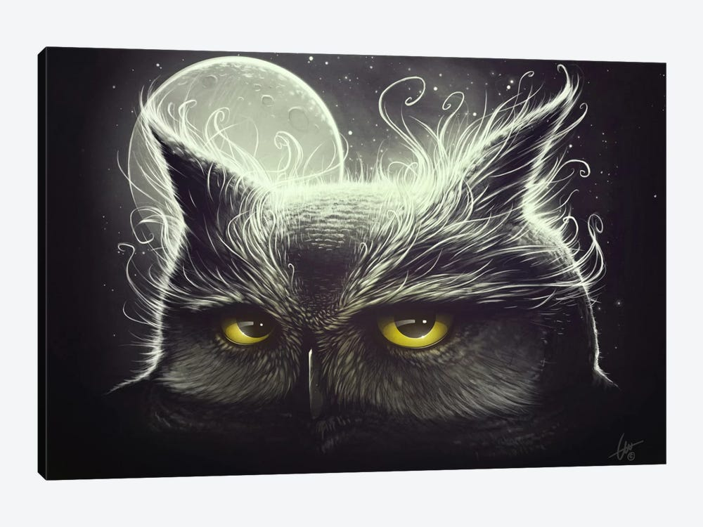 Owl And The Moon by Dr. Lukas Brezak 1-piece Canvas Artwork
