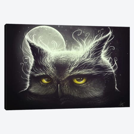 Owl And The Moon Canvas Print #DOC15} by Dr. Lukas Brezak Canvas Art
