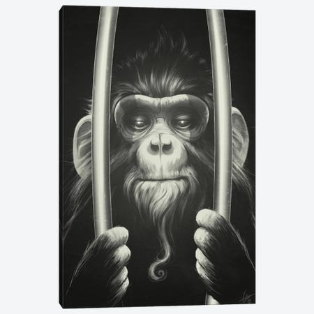 Prisoner II Canvas Print #DOC18} by Dr. Lukas Brezak Art Print