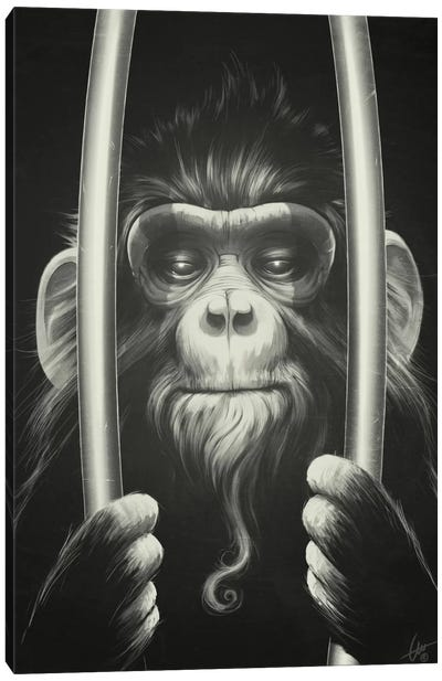 Prisoner II Canvas Art Print