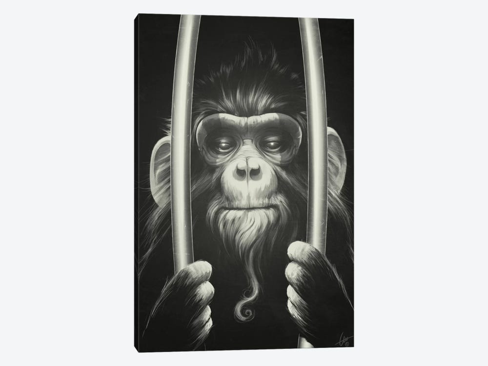 Prisoner II 1-piece Canvas Art Print