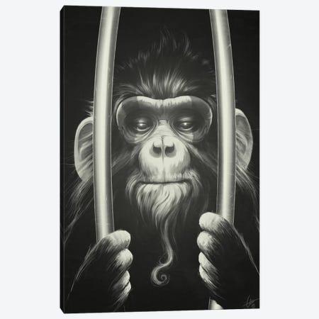 Prisoner II Canvas Print #DOC18} by Dr. Lukas Brezak Art Print