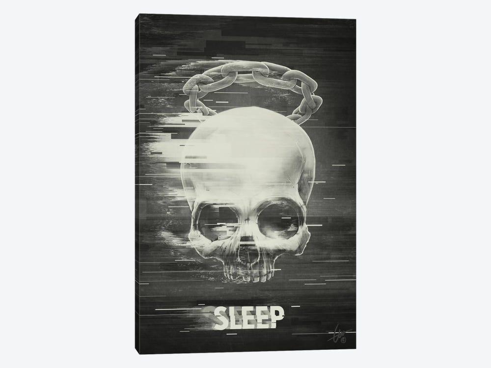 Sleep by Dr. Lukas Brezak 1-piece Canvas Art Print