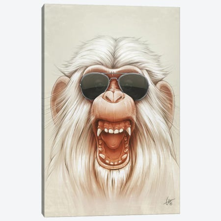 The Great White Angry Monkey Canvas Print #DOC24} by Dr. Lukas Brezak Canvas Print