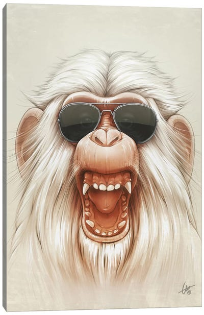 The Great White Angry Monkey Canvas Art Print