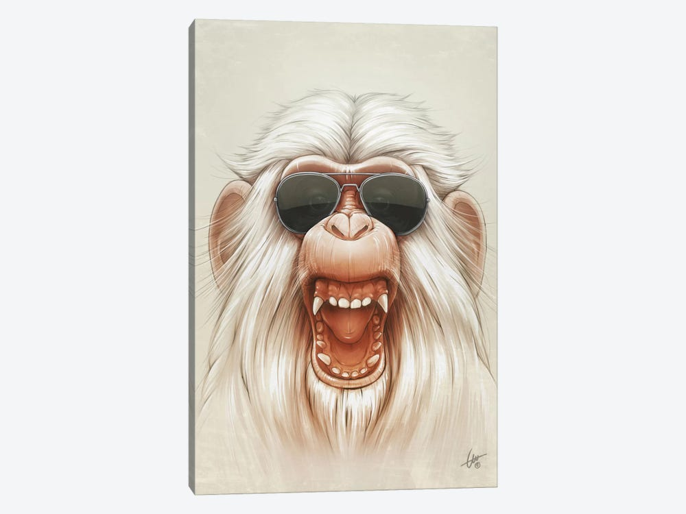 The Great White Angry Monkey by Dr. Lukas Brezak 1-piece Canvas Artwork