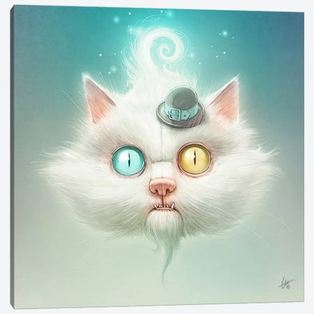 The Odd Kitty Canvas Print #DOC26} by Dr. Lukas Brezak Canvas Art Print
