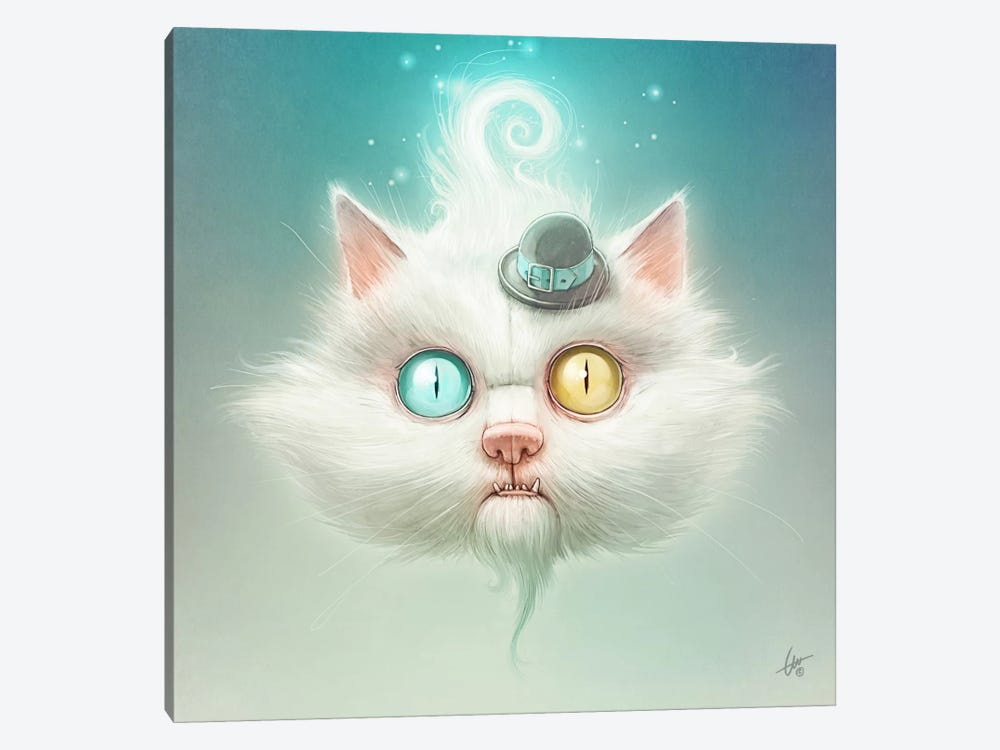 The Odd Kitty by Dr. Lukas Brezak 1-piece Canvas Wall Art