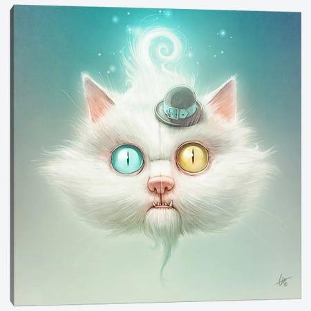 The Odd Kitty Canvas Print #DOC26} by Dr. Lukas Brezak Canvas Art Print