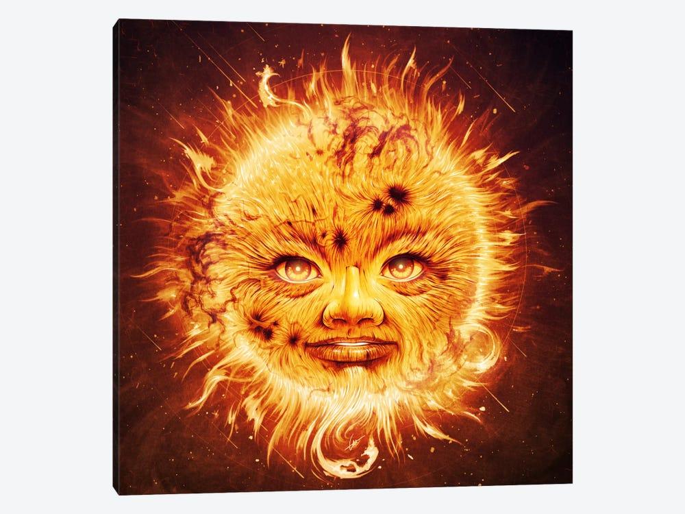 The Sun by Dr. Lukas Brezak 1-piece Canvas Print