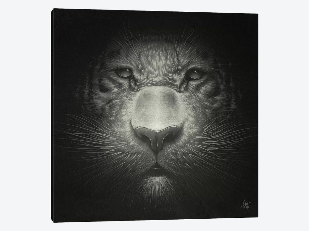 Tiger by Dr. Lukas Brezak 1-piece Art Print