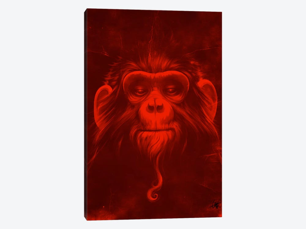 Twelfth Monkey by Dr. Lukas Brezak 1-piece Canvas Print
