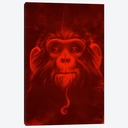 Twelfth Monkey Canvas Print #DOC30} by Dr. Lukas Brezak Canvas Print