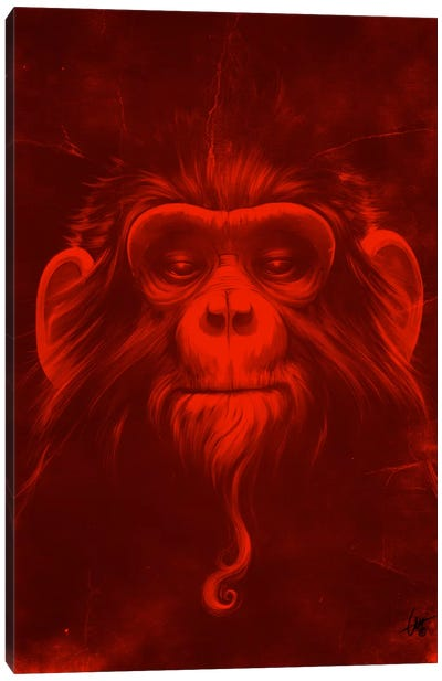 Twelfth Monkey Canvas Art Print