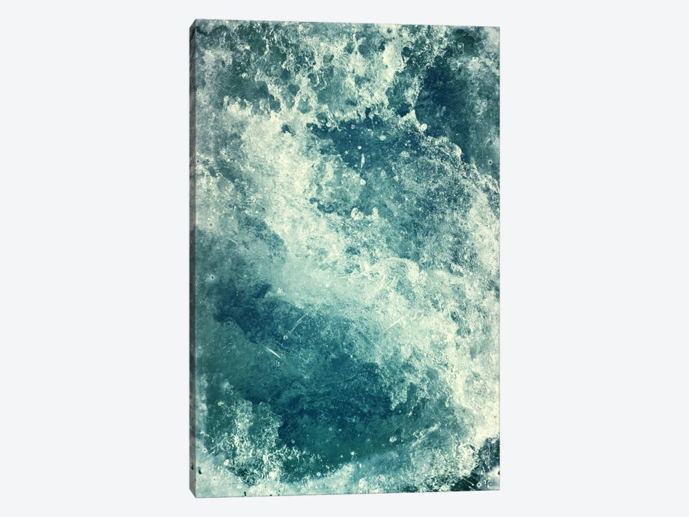 Water I by Dr. Lukas Brezak 1-piece Canvas Artwork