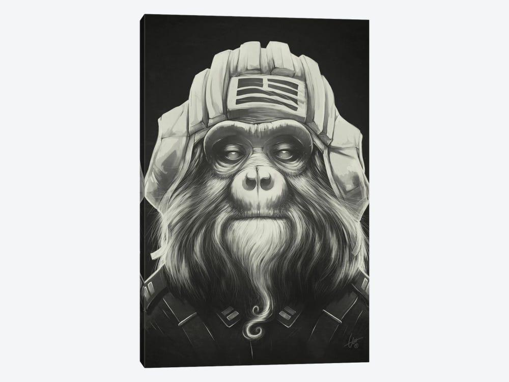 Commander by Dr. Lukas Brezak 1-piece Art Print