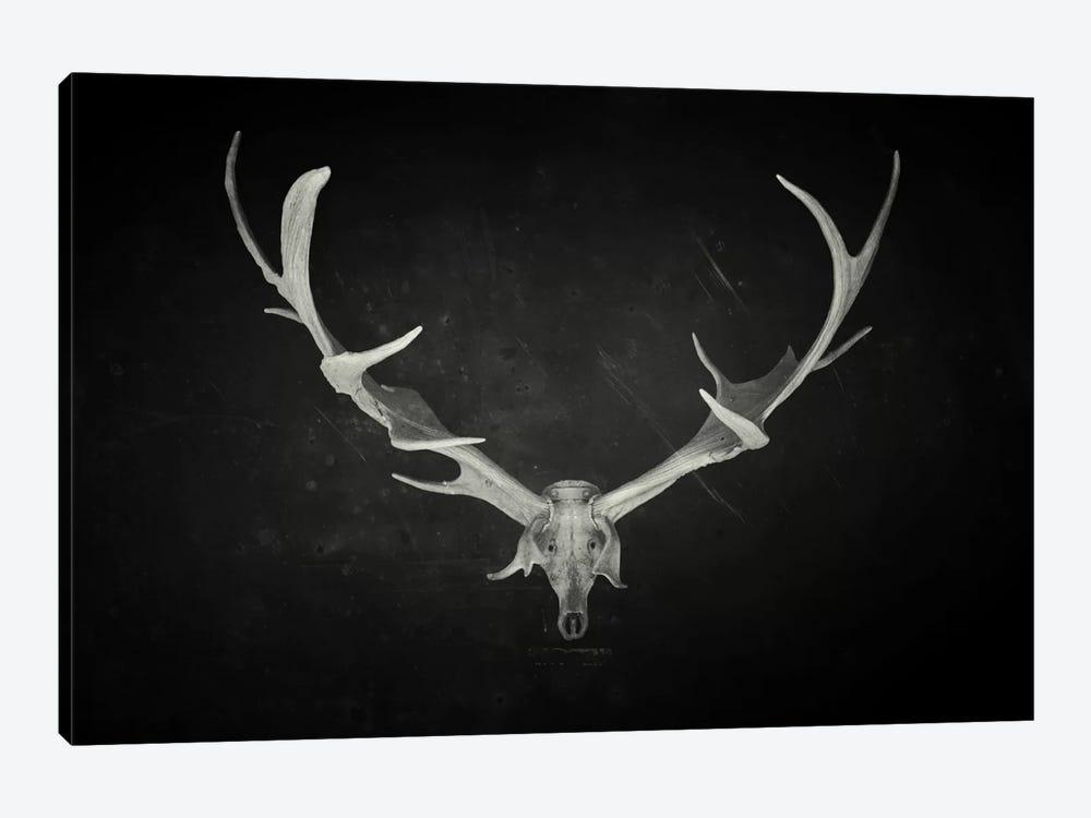 Dead King by Dr. Lukas Brezak 1-piece Canvas Art