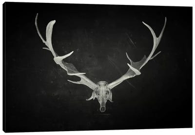 Dead King Canvas Art Print