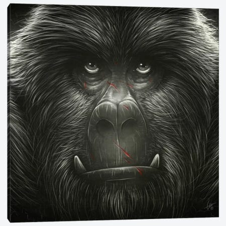 Kong! Canvas Print #DOC8} by Dr. Lukas Brezak Canvas Artwork