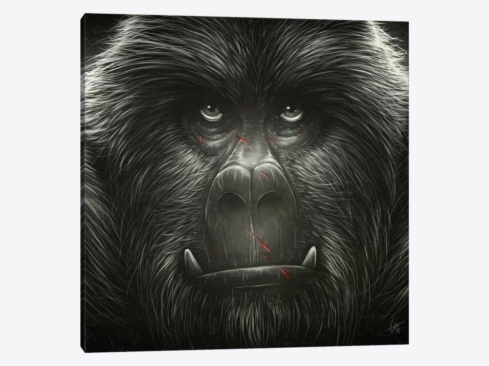 Kong! by Dr. Lukas Brezak 1-piece Canvas Art