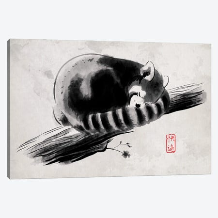 Comfortable Branch Canvas Print #DOI392} by Denis Orio Ibañez Canvas Art