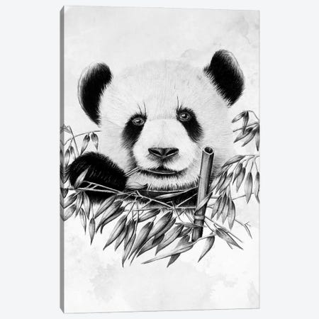 Eating Panda 3-Piece Canvas #DOI452} by Denis Orio Ibañez Canvas Print