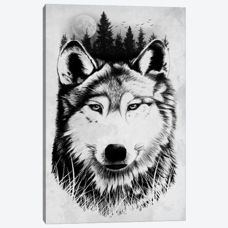 Wild Wolf Canvas Print #DOI456} by Denis Orio Ibañez Canvas Wall Art