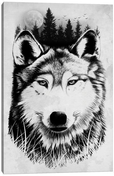 Wild Wolf Canvas Art Print