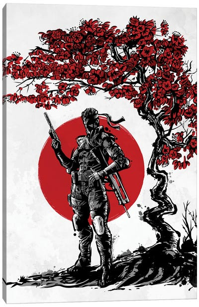 Soldier Under The Sun Canvas Art Print