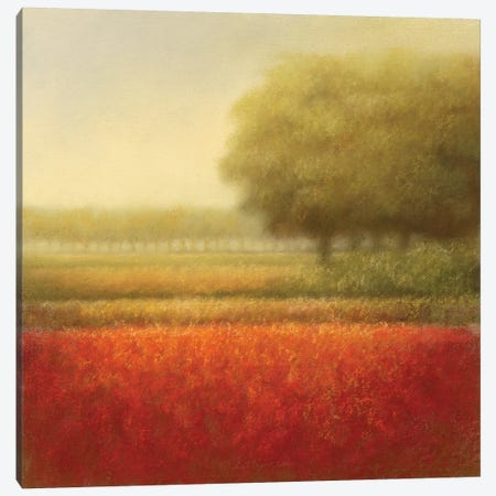 Autumn Field Canvas Print #DOL1} by Hans Dolieslager Canvas Print