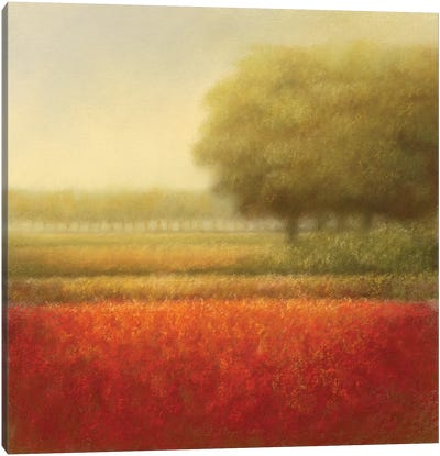 Autumn Field Canvas Art Print