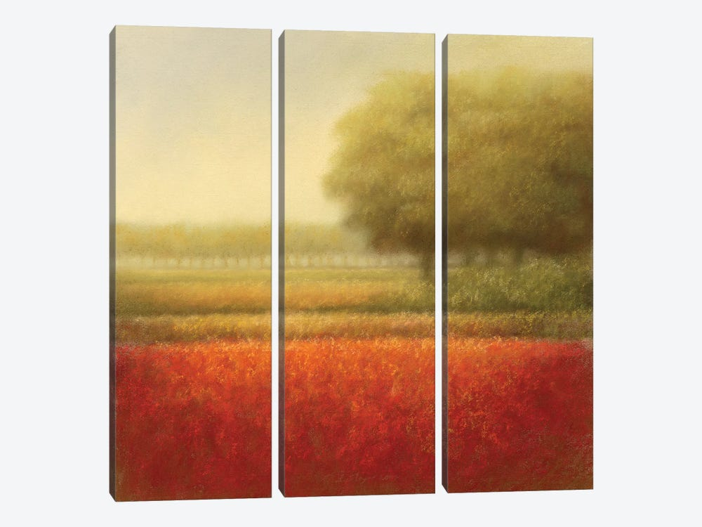 Autumn Field by Hans Dolieslager 3-piece Canvas Wall Art