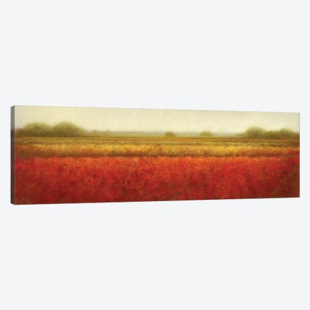 Field Of Poppies Canvas Print #DOL3} by Hans Dolieslager Canvas Art Print