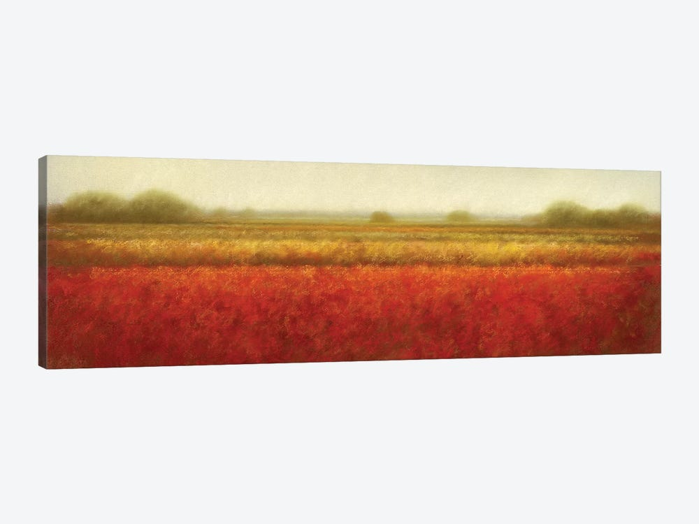 Field Of Poppies by Hans Dolieslager 1-piece Canvas Art