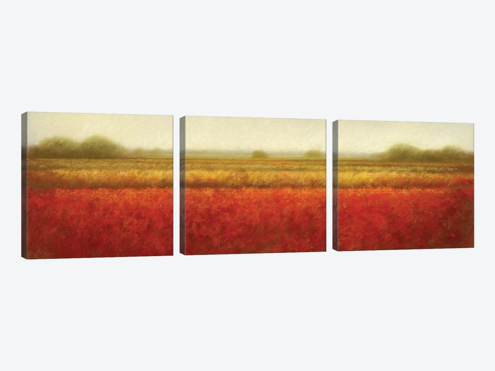 Field Of Poppies by Hans Dolieslager 3-piece Canvas Wall Art