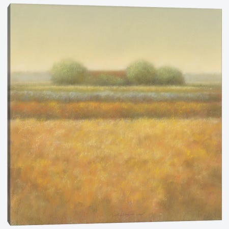 Grey Group Of Trees 3-Piece Canvas #DOL4} by Hans Dolieslager Canvas Artwork