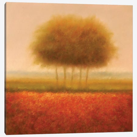 Orange Group Of Trees Canvas Print #DOL5} by Hans Dolieslager Canvas Art