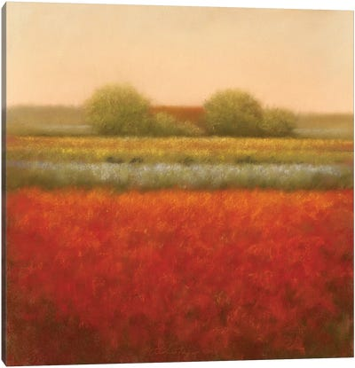 Red Field Canvas Art Print