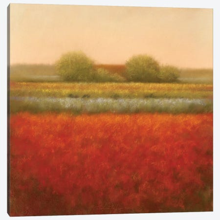 Red Field Canvas Print #DOL6} by Hans Dolieslager Canvas Artwork