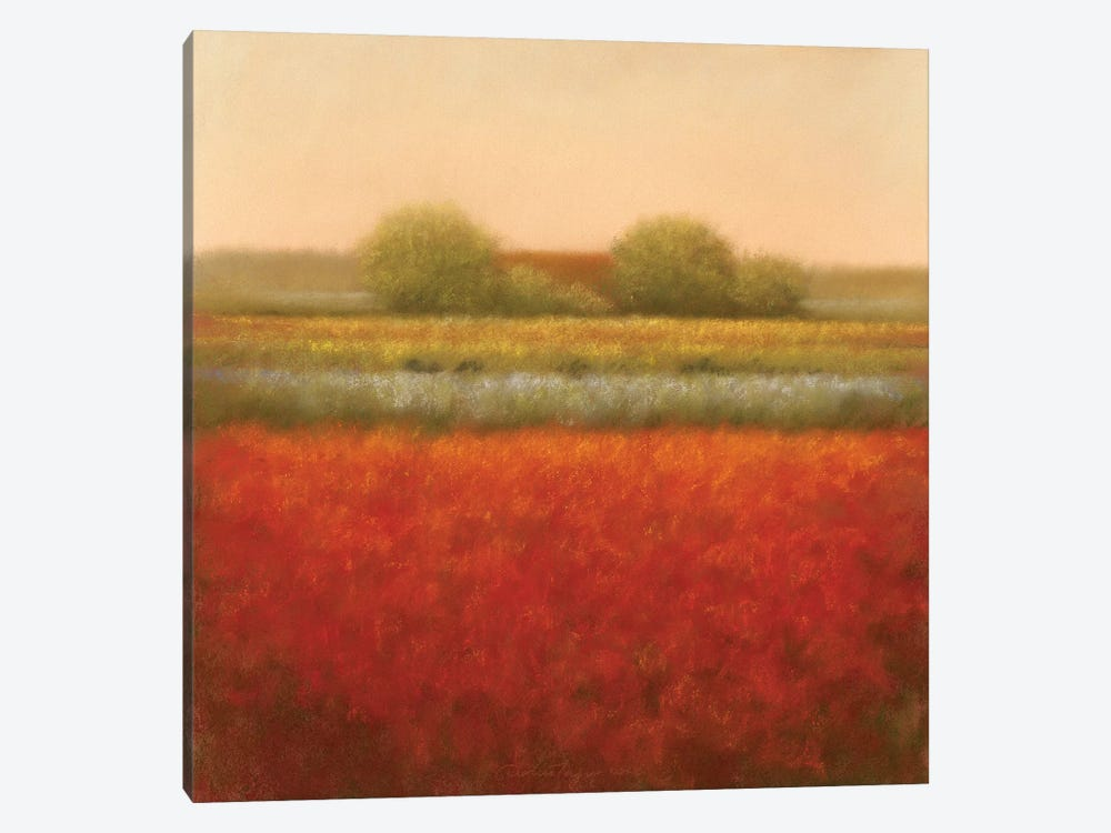 Red Field by Hans Dolieslager 1-piece Canvas Art Print