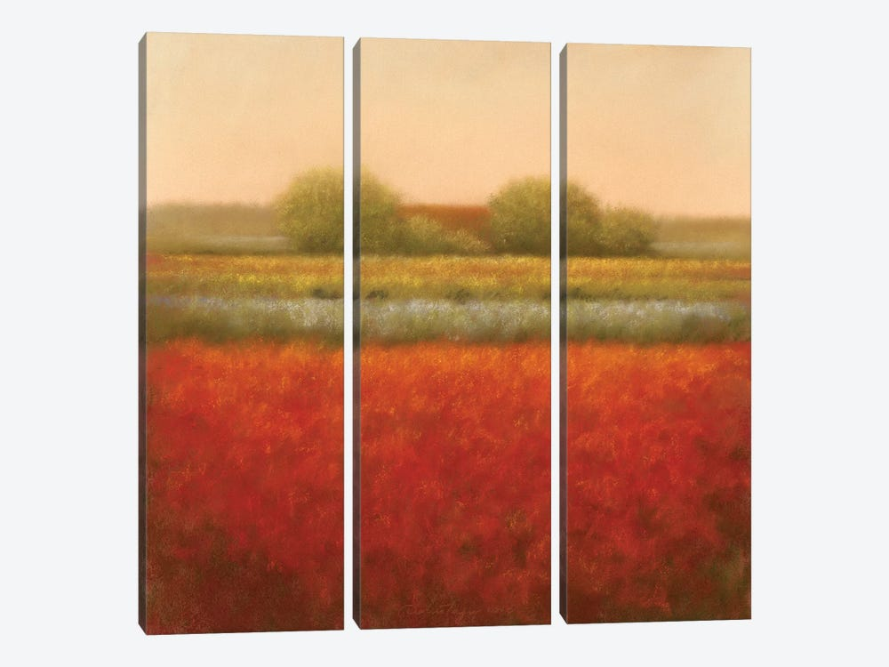 Red Field by Hans Dolieslager 3-piece Canvas Art Print