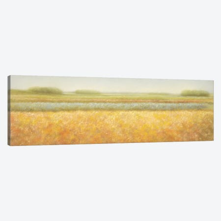 View Canvas Print #DOL7} by Hans Dolieslager Canvas Artwork
