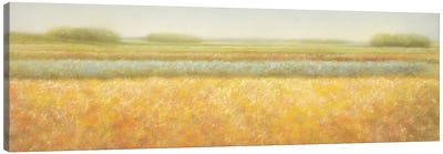 View Canvas Art Print