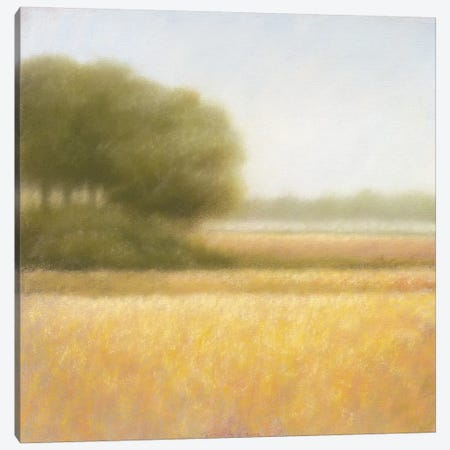 Wheat Field Canvas Print #DOL8} by Hans Dolieslager Canvas Art Print