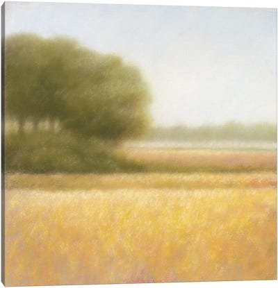Wheat Field Canvas Art Print