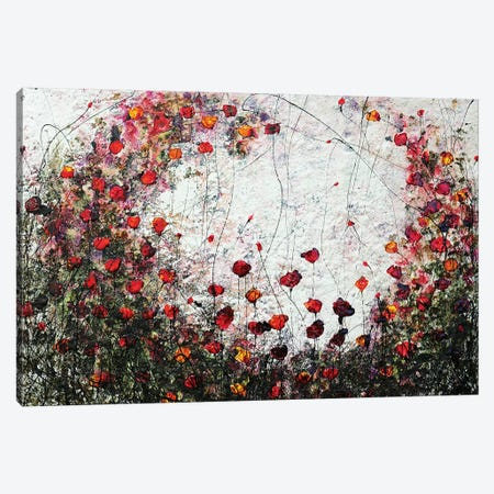 Poppies In Love II Canvas Print #DOM107} by Donatella Marraoni Canvas Print