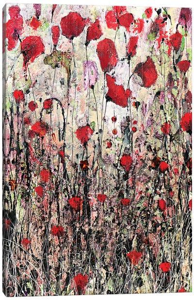 Settembre Canvas Art Print