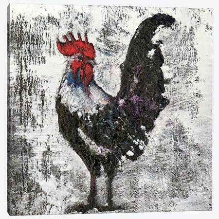 Gallo II Canvas Print #DOM151} by Donatella Marraoni Canvas Art Print